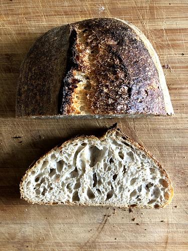 Basic open crumb